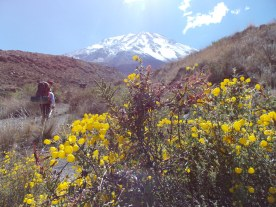 Misti 5825 msnm