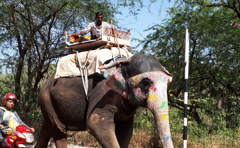 Jaipur, la ciudadRosa
